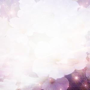 light03.jpg